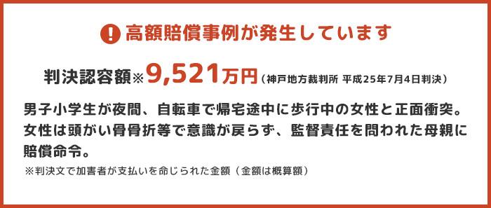 高額賠償事例:判決認容額※9,521万円